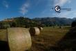 © Foto di Giuseppe Manzolillo - Agricoltura e sviluppo_verso la nuova…PAC!